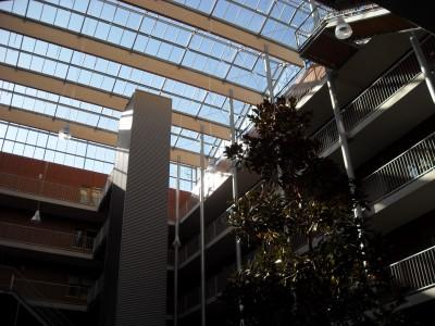 Grote glasoverkapte ruimte met grote ventialatieramen 4